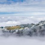 "Ralligstöck im Nebel • <a style=""font-size:0.8em;"" href=""http://www.flickr.com/photos/7223507@N07/22914344902/"" target=""_blank"">View on Flickr</a>"