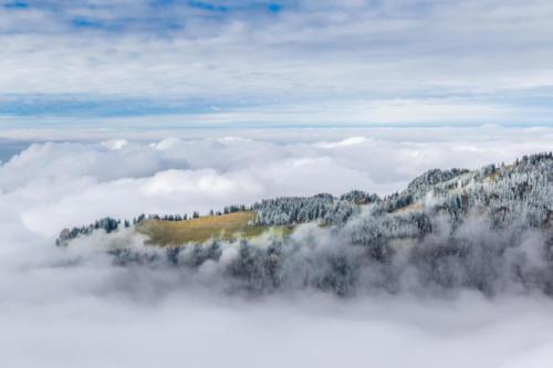Ralligstöck im Nebel